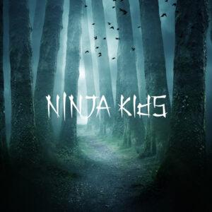 Usługi Ninja